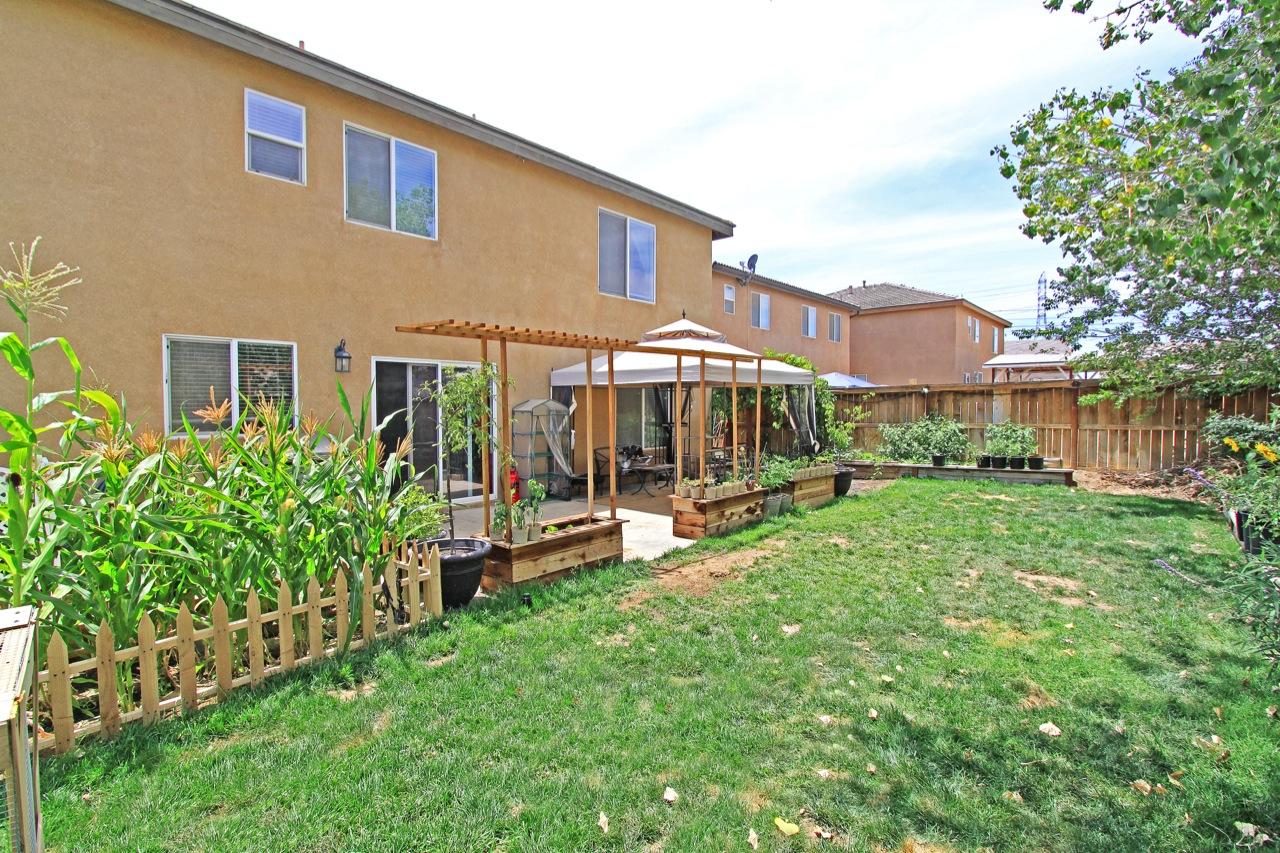 29 Backyard 2
