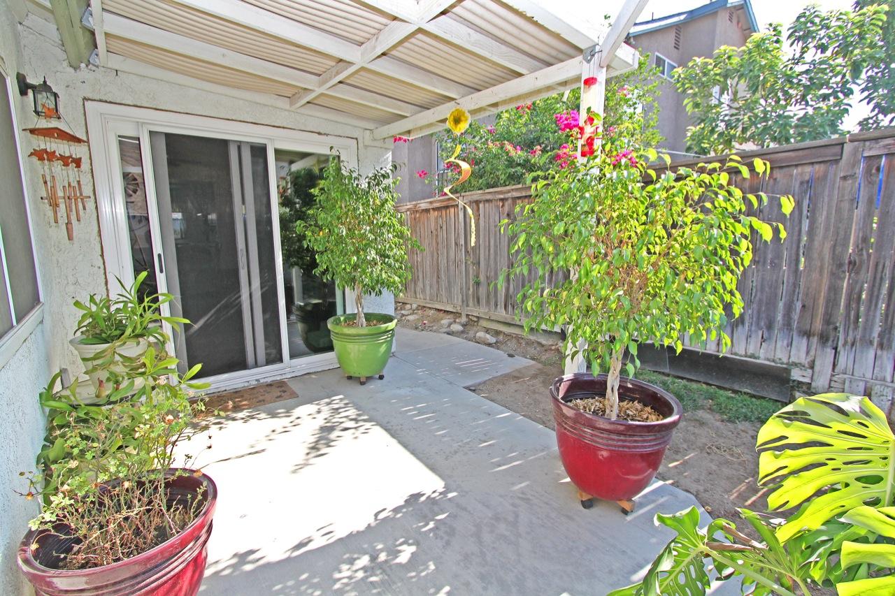 29 Backyard 3
