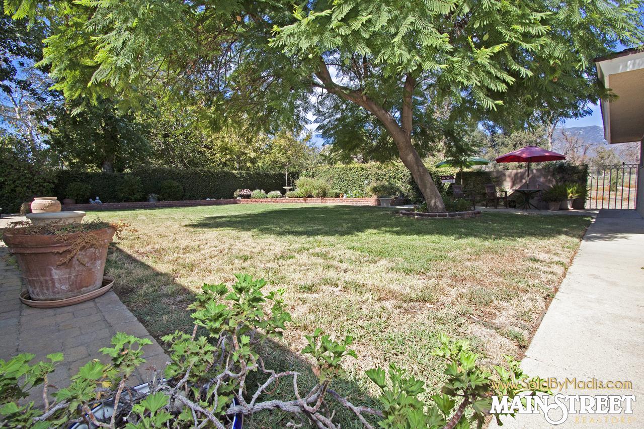 30 Backyard 4