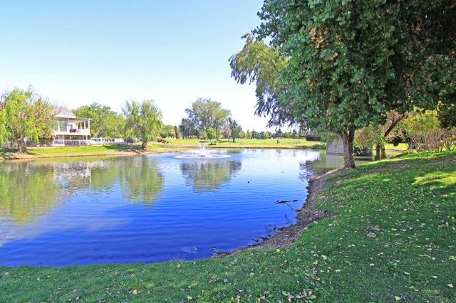 31 Lake 1