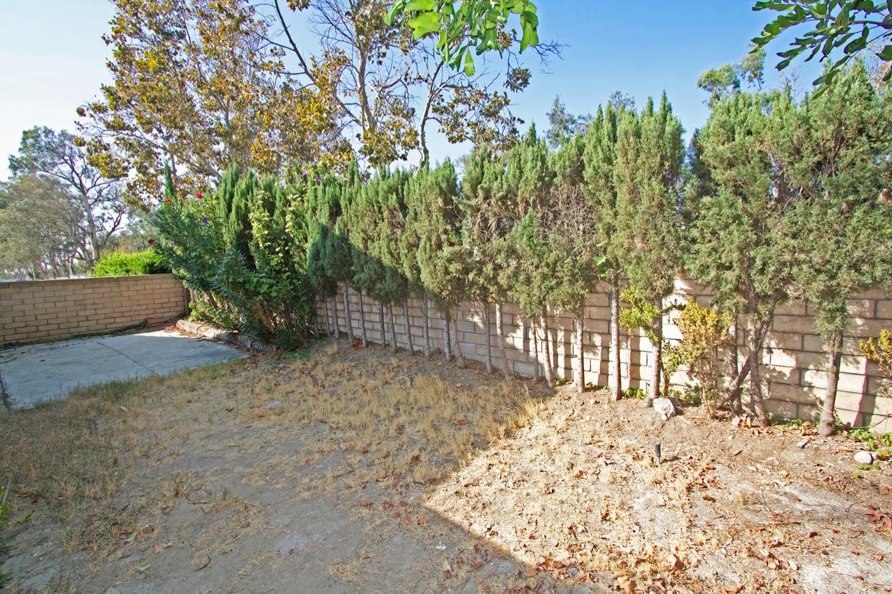 34 Backyard