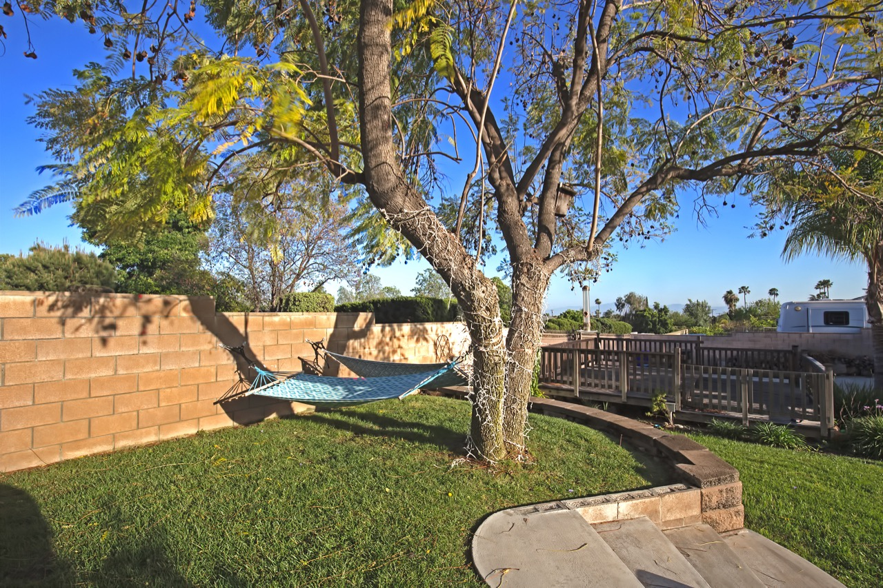 29 Backyard 5