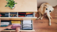 15 Ways to Maximize Storage in Your Home