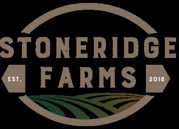 stoneridge farm new homes for sale