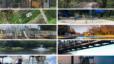 Best Parks in Arlington, TX | Top 10