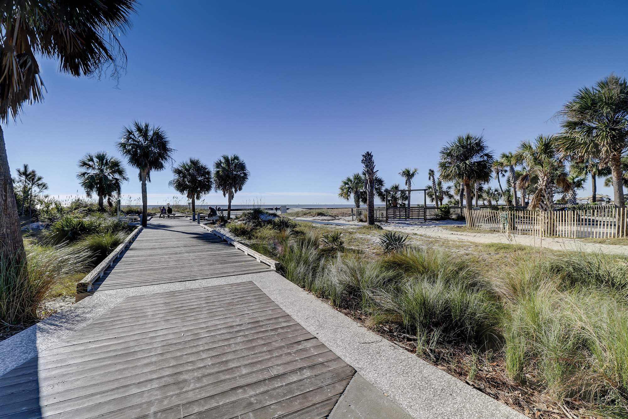 Forest Beach  Hilton Head Real Estate  Collins Group Realty