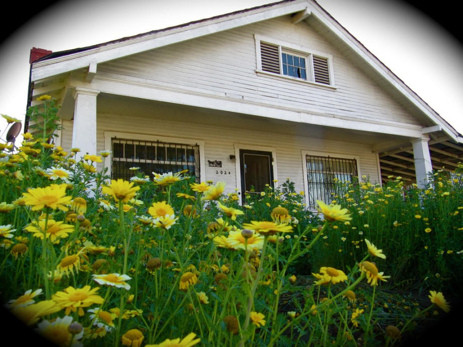 Cost-Effective Front Yard Renovations that Enhance Your Home on Backyard Renovations Cost id=45299