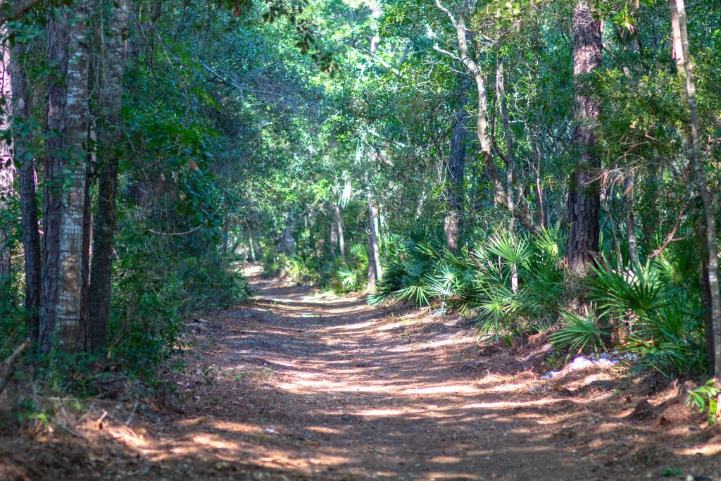 75 Confederate Avenue - Dirt road access