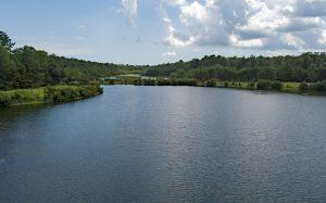 Heyward Point Lake