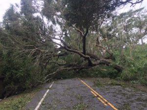 Hurricane Matthew Damage