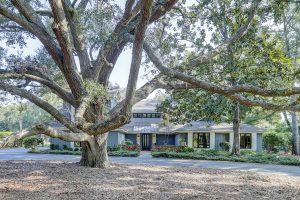 Over 200-year old Angel Oak Tree