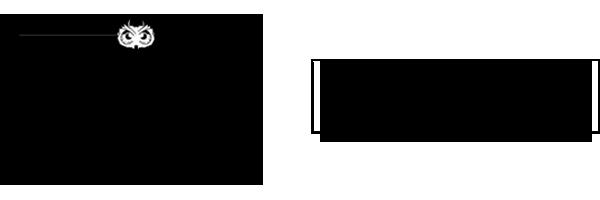 The Lindsey Bartley Team Logo