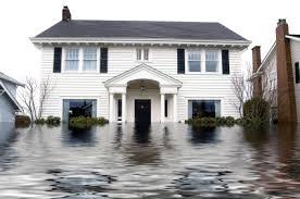 Flood Insur