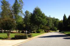 Holcombe's Farm Milton Georgia 30004 (7)
