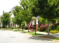 Shadowbrook At Town Center Suwanee Homes (8)