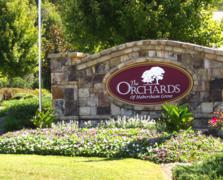 The Orchards Of Habersham Grove (16)