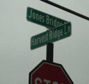 Orchards At Jones Bridge Johns Creek Community (27)