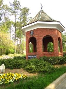 Cameron Crest Farms Johns Creek GA Homes (1)