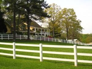 Cameron Crest Farms Johns Creek GA Homes (10)
