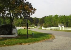 Cameron Crest Farms Johns Creek GA Homes (11)