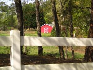 Cameron Crest Farms Johns Creek GA Homes (2)