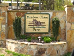 Cameron Crest Farms Johns Creek GA Homes (6)
