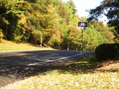 Horseshoe Bend Roswell GA Neighborhood (34)
