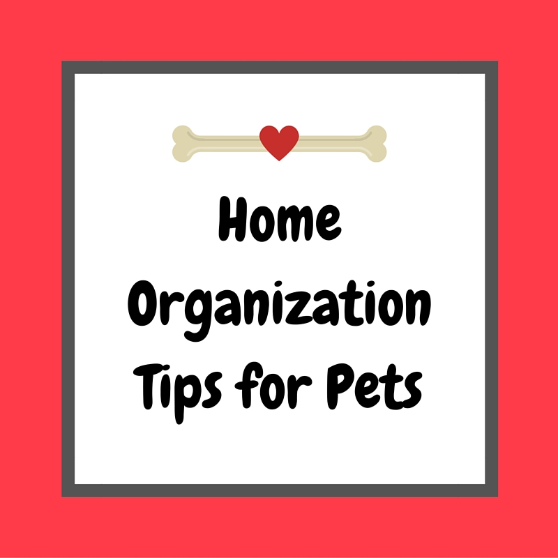 Home Organization Tips for Pets