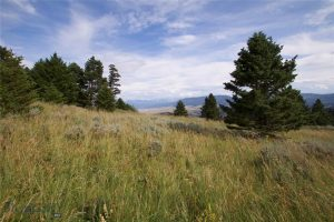 Explore TBD Skyline Dr with Hart Real Estate Solutions