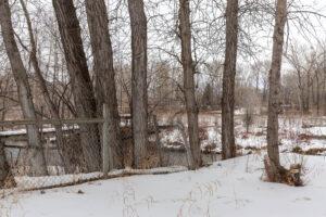 Creek near 9176 River Road in Bozeman MT!