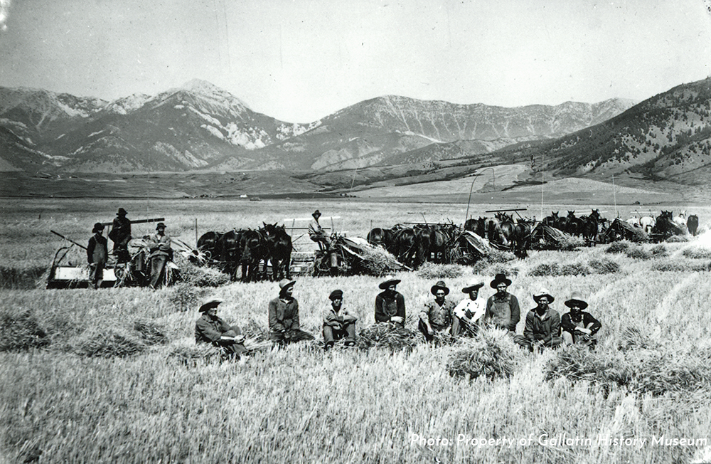 Harvesting near Springhill - Circa 1908. Photo Provided by Gallatin History Museum