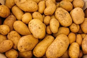 Potatoes are Idaho's signature crop!