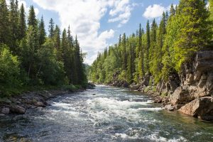You have to check out the Payette River