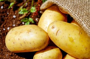 Idaho is known for a their awesome potatoes