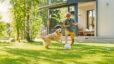 boy, outside, dog, grass, house