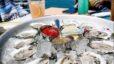 Seafood Restaurants Around LKN