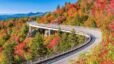 The BEST fall colors to view!