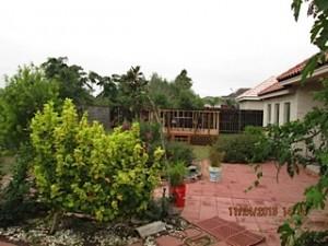 B4-Backyard