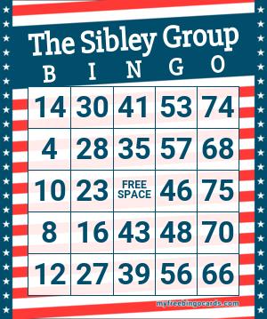 The Sibley Group Bingo