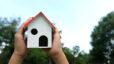 Photo of a bird house