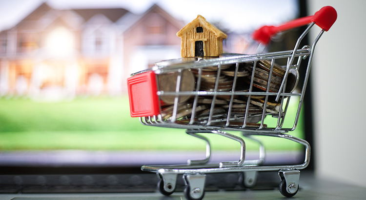 Shopping Cart With Homes