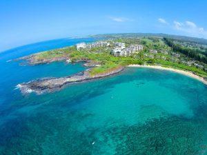 Check out kapalua maui hawaii homes condos for sale