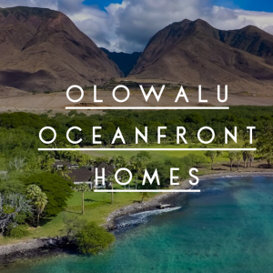Check out the Olowalu oceanfront community of Olowalu Makai