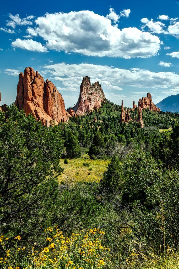 Colorado Springs Remax