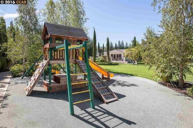 Steph Curry's playground