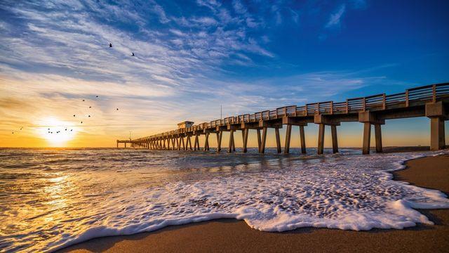 Venice Beach pier