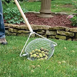 garden nut gatherer