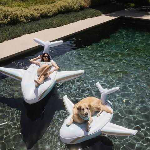 Dog floatie