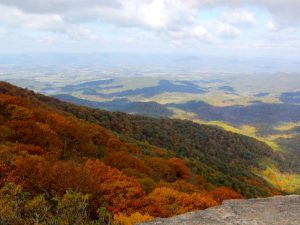 Living in Northern Virginia