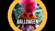 Spooky & Spectacular Halloween Home Tips!